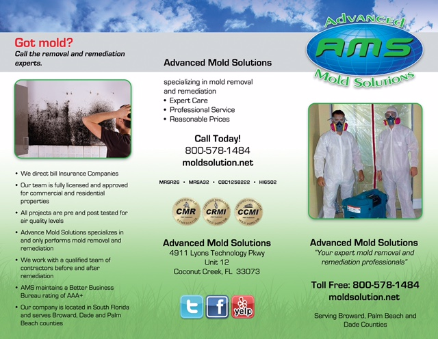 Advanced Mold Solution Brochure Page 1