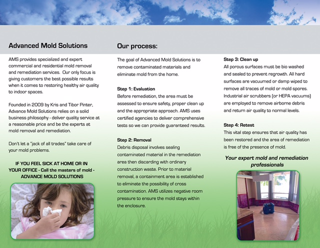 Advanced Mold Solution Brochure Page 2